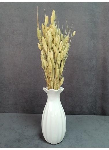 Kuru Çiçek Deposu Kuru Çiçek Kuş Otu Yapraklı 55-60 Cm Yeşil Kahve